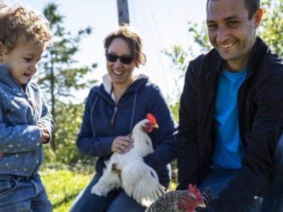poules-3-1024x683